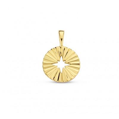 Gold plated hanger met opengewerkte ster
