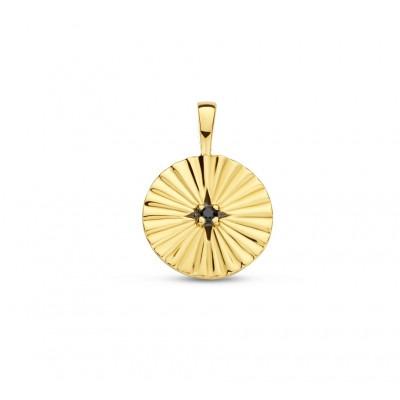 Gold plated hanger met zwarte zirkonia