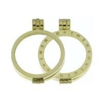 zilver goldplated My iMenso medaillon 33-0074