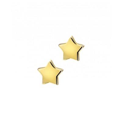 Oorbellen ster goud 4 mm
