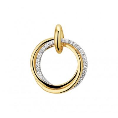 Diamanten hanger goud