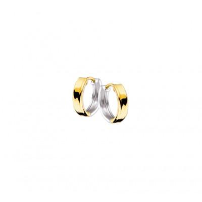 Luxe goudkleurige en zilverkleurige klapcreolen 3 mm