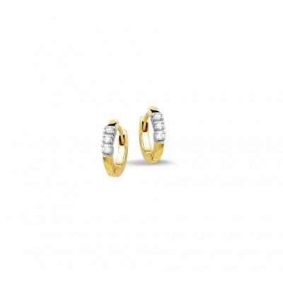 Mooie en luxe diamant gezette klapcreolen