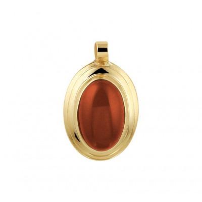 Gouden edelsteen hanger met carneool