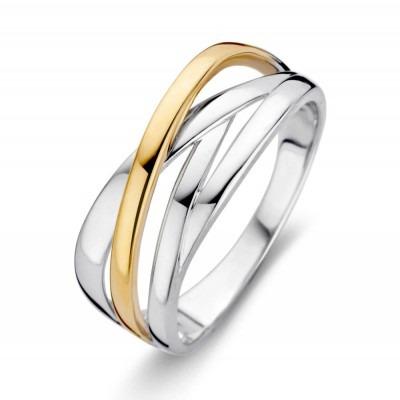 Prachtige ring van prachtig 14 karaat goud met zilver