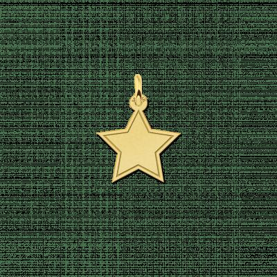 Gouden gegraveerde ster hanger