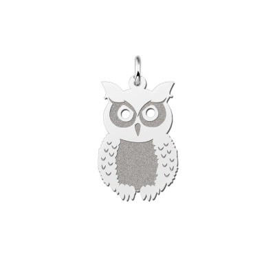 Zilveren uil hanger