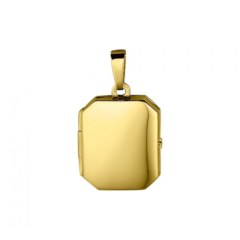 Gouden medaillon rechthoek glanzend 21x17 mm