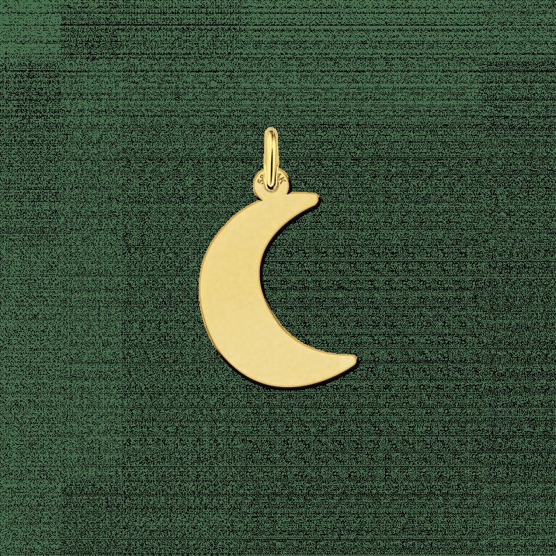 Gouden hanger halve maan met of zonder ketting