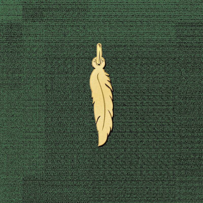 Gouden veer hanger met of zonder ketting