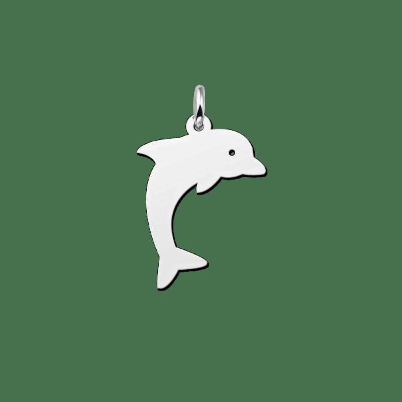 Zilveren dolfijn hanger