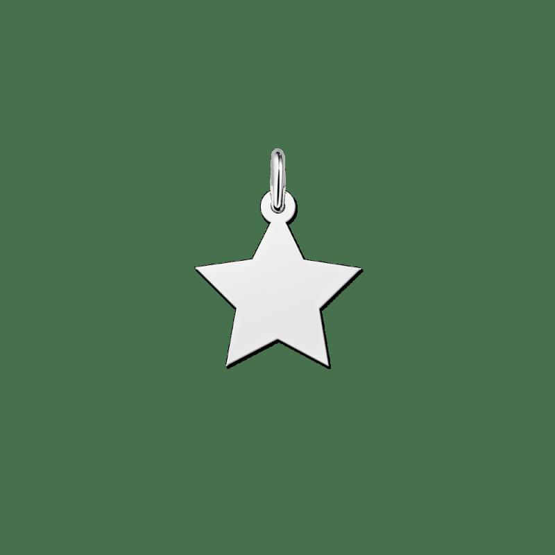 Zilveren ster hanger